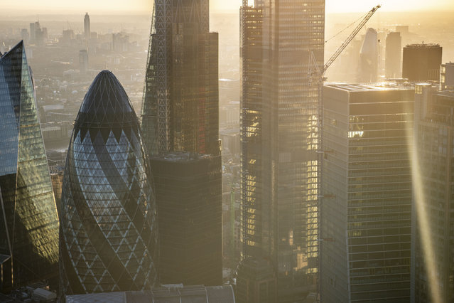 Sunset looking through the towers in the City of London with the construction of 22 Bishopsgate. (Photo by Jason Hawkes/Caters News Agency)