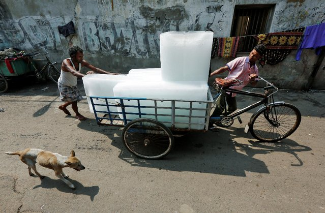 Men transport ice on a tricycle to a local market in Kolkata, India May 24, 2016. (Photo by Rupak De Chowdhuri/Reuters)