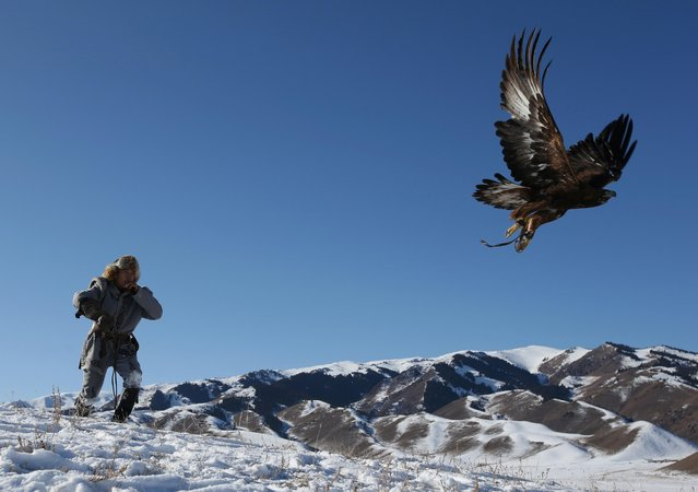 A hunter releases his tamed golden eagle during a traditional hunting contest outside the village of Kaynar in Almaty region, Kazakhstan on December 8, 2019. (Photo by Pavel Mikheyev/Reuters)
