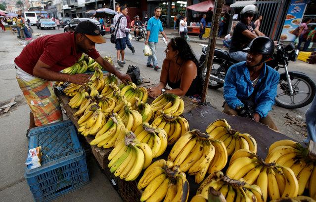 Vendors sell bananas at a market in Caracas, Venezuela, June 21, 2016. (Photo by Mariana Bazo/Reuters)