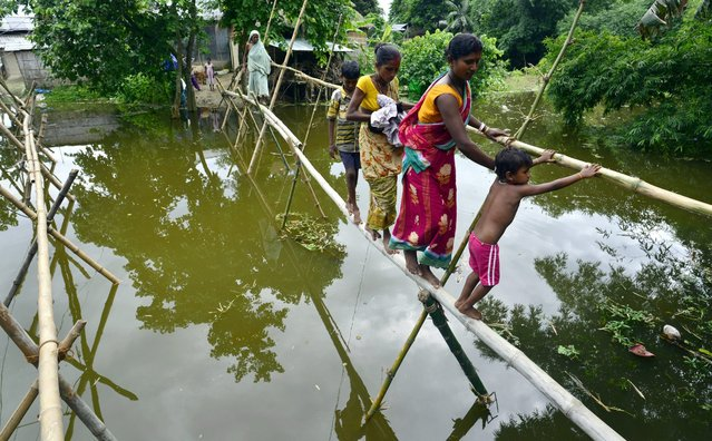 Food affected villagers cross flood waters through a bamboo bridge in the flood affected Morigaon district of Assam state, India, 05 July 2016. Continuous rain since last couple of days inundated six districts of Assam effecting more than 100 thousand people in the second wave of floods in Assam state. (Photo by EPA/Stringer)