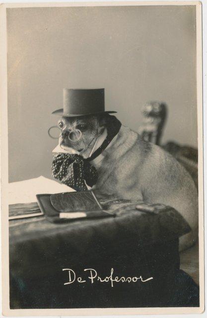 De Professor, 1934