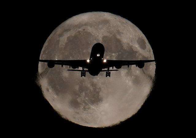 A passenger plane, with a full Harvest moon seen behind, makes its final landing approach towards Heathrow Airport in London, Britain, October 5, 2017. (Photo by Toby Melville/Reuters)