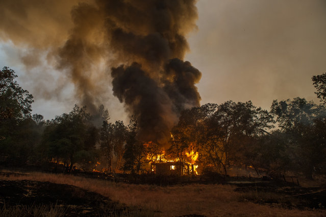In this photo taken on Thursday, September 10, 2015, a home burns near Mokelumne Hill, in Jackson, Calif. Another round of evacuations has been ordered as wildfires continue to rage in the central and northern part of the state. (Photo by Andrew Sent/The Sacramento Bee via AP Photo)