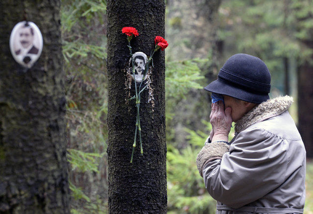 A woman reacts next to a portrait of a victim of Soviet dictator Joseph Stalin's purges at the memorial, where the victims were buried in the woods on the outskirts of Saint-Petersburg, on October 30, 2017. Russia observed today Day of Victims of Political Repressions as people honoured the memory of the thousands of victims perished in the repressions of the Soviet Communist regime. (Photo by Olga Maltseva/AFP Photo)