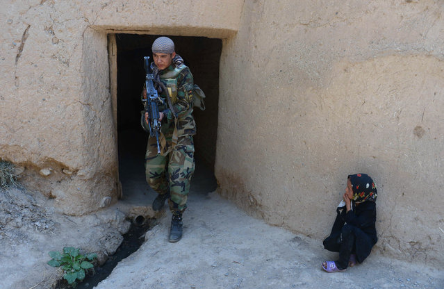 An Afghan girl watches an Afghanistan National Army (ANA) special forces soldier as he patrols in Gozara District of Herat on August 24, 2015. The Taliban are stepping up their summer offensive, launched in late April, amid a bitter leadership dispute following the announcement of the death of longtime leader Mullah Omar. (Photo by Aref Karimi/AFP Photo)