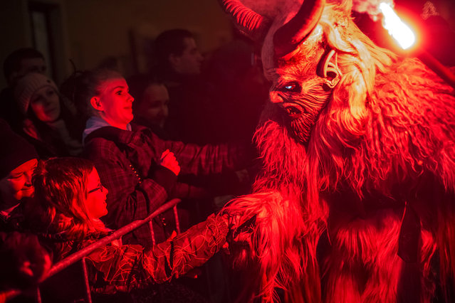 A participant dressed as the Krampus creature approaches onlookers during Krampus gathering on December 12, 2015 in Kaplice, Czech Republic. (Photo by Matej Divizna/Getty Images)