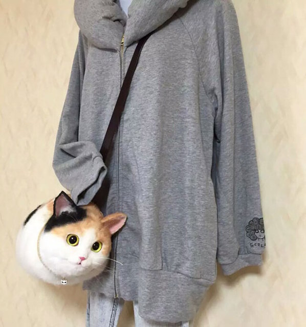 Cat Bags By Pico