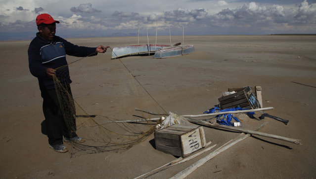 In this January 12, 2016 photo, Abraham Fulguera checks his abandoned fishing net in Lake Poopo, on the outskirts of Untavi, Bolivia. Poopo is now down to 2 percent of what was normal, regional Gov. Victor Hugo Vasquez calculates. Its maximum depth once reached 16 feet. (Photo by Juan Karita/AP Photo)