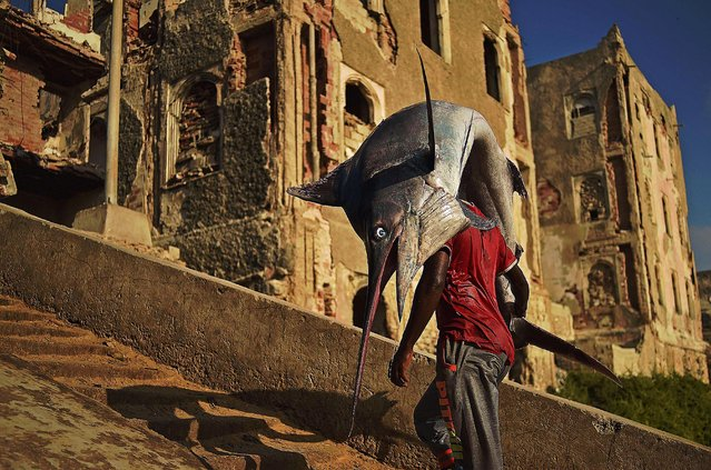A man carrying a sailfish walks through Hamarweyne district in South Mogadishu on March 25, 2015. (Photo by Carl De Souza/AFP Photo)