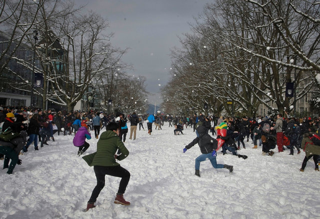 Students throw snowballs during a snowball fight flash mob at the University of British Columbia (UBC) in Vancouver, Canada, February 6, 2017. About 1,000 people at UBC took part in the snowball fight. (Photo by Liang Sen/Xinhua/Barcroft Images)