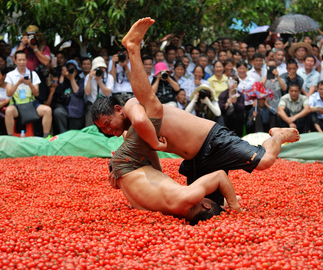 Villagers wrestle in a pool filled with cherry tomatoes to celebrate the fruit's harvest in Guangxi Zhuang, China on April 14, 2016. (Photo by Imaginechina/Rex Features/Shutterstock)