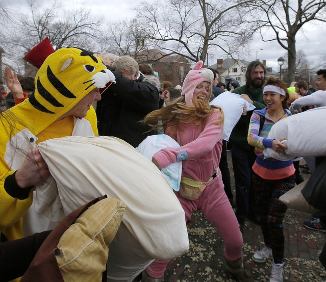 Participants take part in International Pillow Fight Day on the common in Cambridge, Massachusetts April 5, 2014. (Photo by Brian Snyder/Reuters)