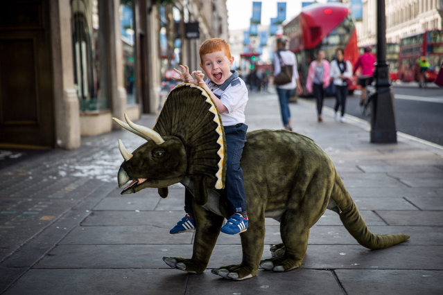 Tristan, 4, plays with a toy Triceratops outside Hamleys on Regent Street on June 25, 2015 in London, England.  The dinosaur, which is 1m30cm in length, sells for £750. The Hamleys toy shop have made their predictions for the top selling toys for Christmas 2015. (Photo by Rob Stothard/Getty Images)
