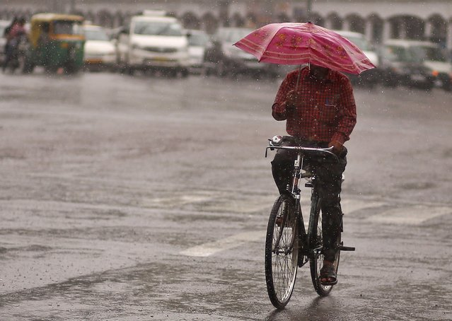 A commuter holds an umbrella while riding a bicycle during a rain shower in New Delhi, India, July 11, 2015. Good rainfall this year is key to boosting a rural economy hit by delayed and lower rains last year, as well as keeping a lid on food inflation and giving India's central bank more scope to cut lending rates. (Photo by Anindito Mukherjee/Reuters)