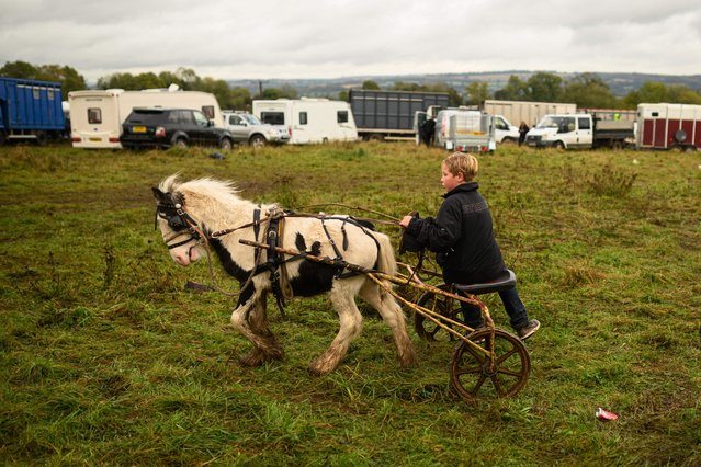 A boy rides a pony and trap at the biannual Stow Horse Fair in the town of Stow-on-the-Wold, England on October 24, 2019. (Photo by Oli Scarff/AFP Photo)