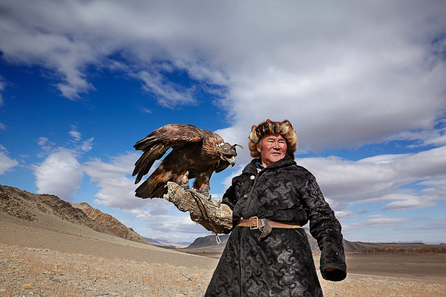 The hunters must forge an intimate relationship with their birds. Eagles are captured as chicks from their nest in the wild. The training process, which takes three or four years has to be done by just one person in order to develop the necessary bond between master and eagle. (Photo by Tariq Zaidi/The Washington Post)