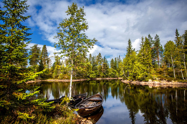 Two old and abandoned wooden boats. This picture is taken in Drammen, Norway. The forest is called Drammensmarka. (Photo by Aa.Sætrenes/Getty Images)