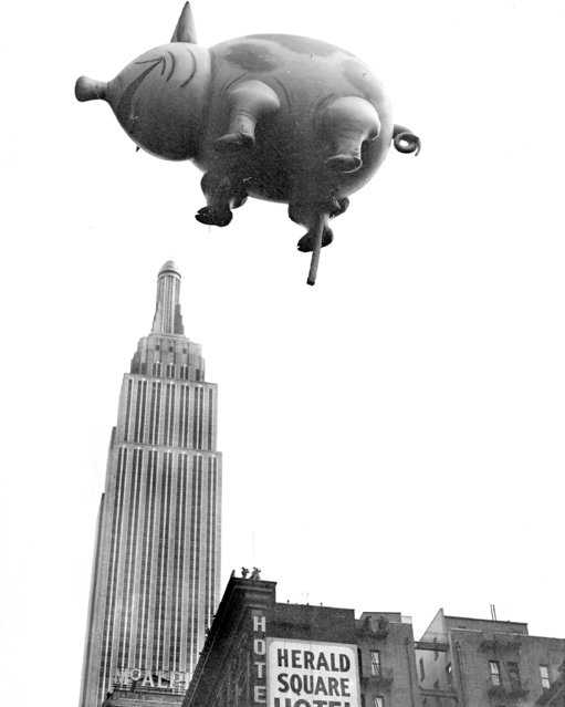 This blind pig is not a speakeasy. He's coming from the Macy's Thanksgiving Day Parade, 1932. And don't let that perspective fool you. Mr. Pig is not really over Empire State Building. (Photo by NY Daily News Archive via Getty Images)