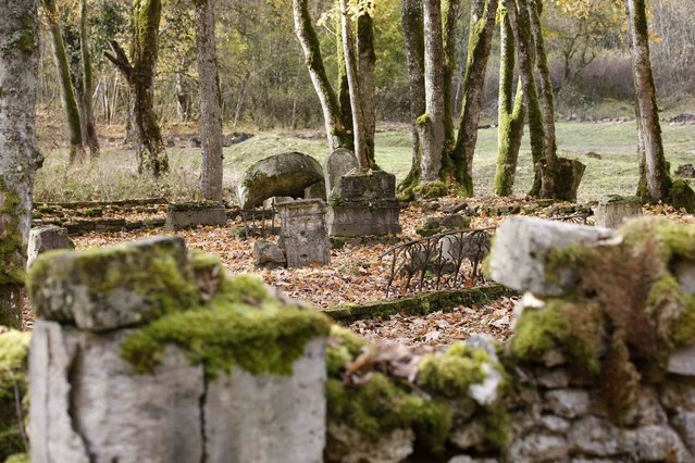 General view of church ruins and the altar at Perthes-les-Hurlus, a former village of 151 inhabitants in 1914, seen November 3, 2015. The village is now largely covered by woodland and is located inside the Camp de Suippes, near Reims, France. (Photo by Charles Platiau/Reuters)