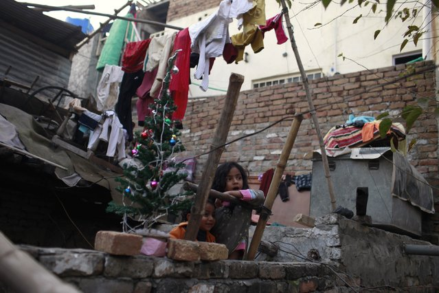 Girls sit on a ladder with a Christmas tree on a wall of their house on Christmas eve at a Christian slum in Islamabad December 24, 2014. (Photo by Sara Farid/Reuters)