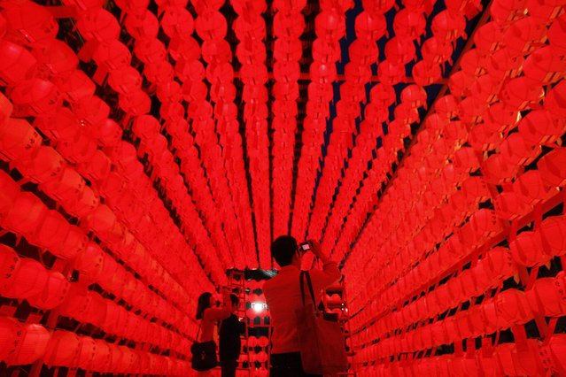 Visitors take pictures of lanterns during the Lotus Lantern Festival to celebrate the upcoming birthday of Buddha on May 17, at Jogye temple in Seoul, South Korea, Sunday, May 12, 2013. (Photo by Ahn Young-joon/AP Photo)