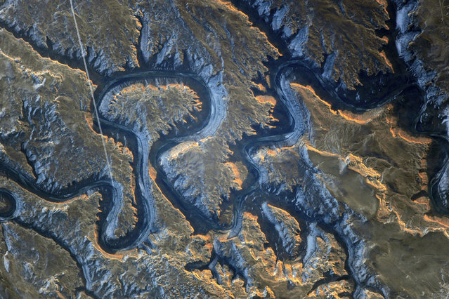 Photograph of the Green river canyon also known as Bowknot Bend, taken by astronauts aboard the International Space Station (ISS) on January 22, 2014 above Utah, USA. The steep cliffs are up to 300 metres high and cast a shadow on the river below. At lower left is a contrail caused by a flying aircraft. (Photo by NASA/SPL/Barcroft Media)