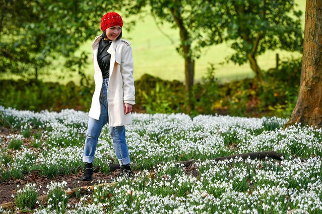 A woman walks in between a carpet of snowdrops in bloom at Painswick Rococo Garden, Painswick, Gloucestershire on February 5, 2020. (Photo by Ben Birchall/PA Images via Getty Images)