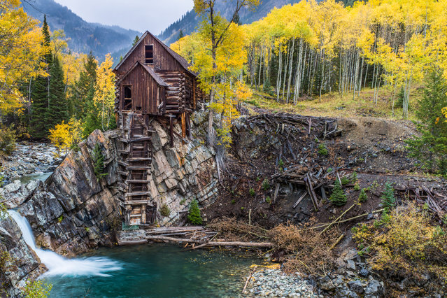 """Old Mill"". Each autumn, the shortening of the hours of daylight and the return of near freezing weather triggers the breakdown of chlorophyll, the chemical that gives plants their green color. As the green fades, the quaking aspen forests decorate their mountainous landscapes with spectacular displays of shades of yellow with occasional splashes of orange and red. Location: Colorado. (Photo and caption by John Chaney/National Geographic Traveler Photo Contest)"