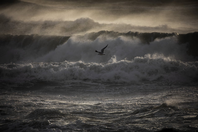 A gull overflies the Mediterranean sea during strong winds in Barcelona, Spain, Monday, January 20, 2020. Two people have died as storms carrying heavy snowfalls and gale-force winds lashed many parts of Spain on Monday. The storm has forced the closure of Alicante airport and some 30 roads in eastern region. Six provinces are on top alert. (Photo by Emilio Morenatti/AP Photo)
