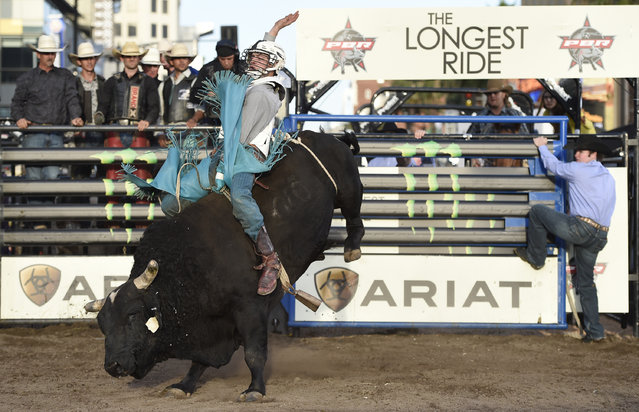 """A professional bull rider participates in a bull riding exhibition at the premiere of """"The Longest Ride"""" at the TCL Chinese Theatre on Monday, April 6, 2015, in Los Angeles. (Photo by Chris Pizzello/Invision/AP Photo)"""