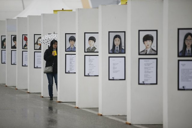 A mourner looks at pictures of victims from the sunken ferry Sewol at the official memorial altar for the victims in Ansan on the occasion of the first anniversary of the ferry disaster that killed more than 300 passengers, April 16, 2015. (Photo by Kim Hong-Ji/Reuters)