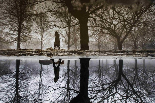 A woman is reflected in a puddle from rain and melted ice as she walks her dog in Toronto. (Photo by Mark Blinch/Reuters)
