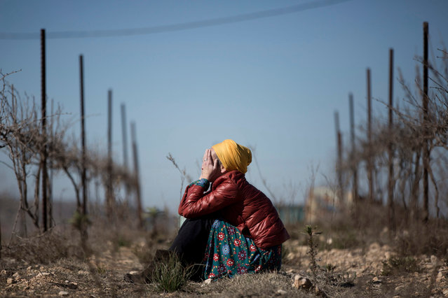 Israeli settler Tamar Nizri cries after her housing unite was destroyed by an Israeli bulldozer during the demolition of the illegal Jewish settlement of Amona at the West Bank, 07 February 2017. Israeli police on 02 February completed the evacuation of Jewish settlers from the West Bank settlement of Amona in compliance with an Israeli court order that ruled the settlement illegal. (Photo by  Abir Sultan/EPA)
