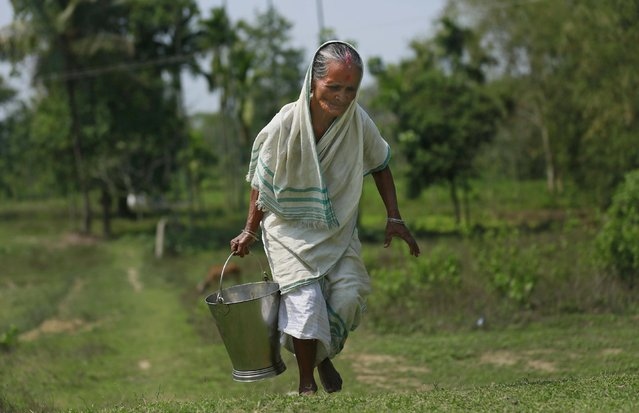 An elderly Indian village woman carries drinking water in a bucket at Panbari village the Duke and Duchess of Cambridge are expected to visit near Kaziranga National Park, east of Gauhati, northeastern Assam state, India, Tuesday, April 12, 2016. (Photo by Anupam Nath/AP Photo)