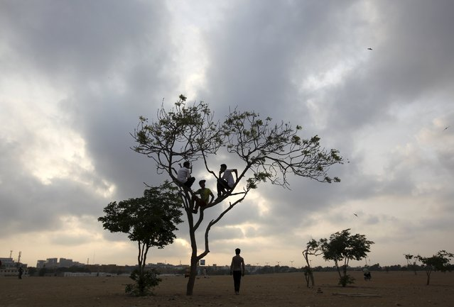 Boys sit in a tree under a partly cloudy sky in an open field in Karachi, Pakistan, May 6, 2015. (Photo by Akhtar Soomro/Reuters)