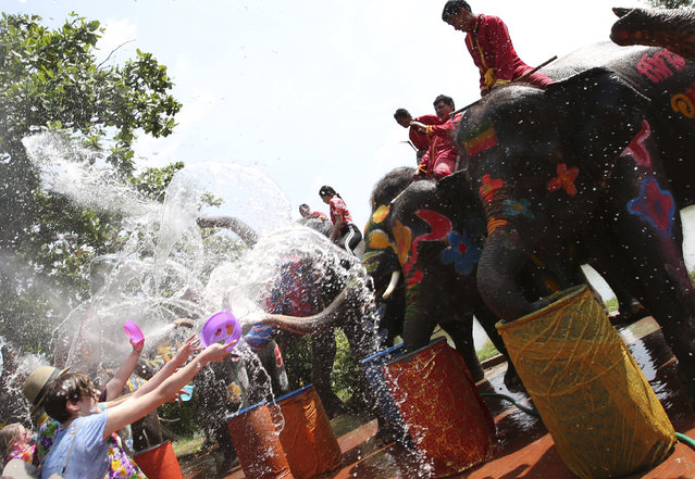 With an assist from its mahouts, elephants blow water from its trunk to tourists at Songkran or ancient Thai New Year celebration in Ayutthaya province, central Thailand Tuesday, April 11, 2017. (Photo by Sakchai Lalit/AP Photo)