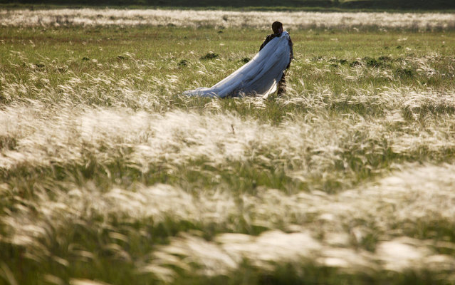 A student of the General Yermolov Cadet School walks through a field after a parachute landing in the village of Novomaryevskaya outside the southern city of Stavropol, Russia, May 13, 2016. (Photo by Eduard Korniyenko/Reuters)