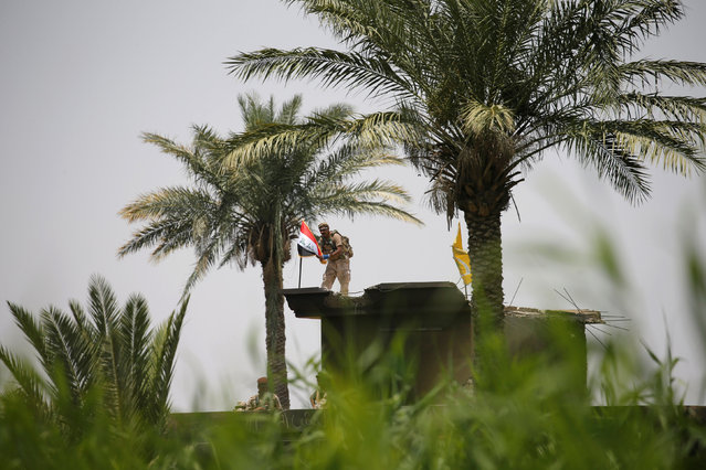 A member of Iraqi security forces puts the Iraqi flag over a building near Falluja, Iraq, May 25, 2016. (Photo by Thaier Al-Sudani/Reuters)