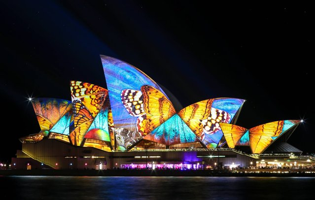 """Butterflies in the night sky"". Whilst visiting Sydney VIVID festival 2014, I managed to score myself a front row spot at the edge of Sydney Harbor. With a lot of patience and a lot of exposure time, the wait was well worth it in the end when I captured this moment at just the right time. Photo location: Sydney, Australia. (Photo and caption by Rachel Kutzner/National Geographic Photo Contest)"