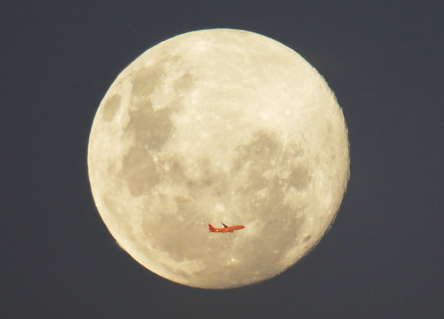 A Virgin Airlines commercial aircraft is illuminated by the setting sun in front of a full moon after taking off from Sydney Airport, June 12, 2014. (Photo by Jason Reed/Reuters)