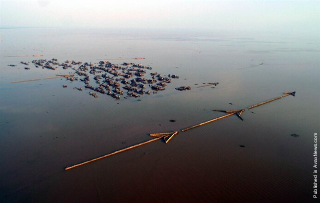 """The Tonle Sap Lake, is the largest inland lake in Southeast Asia. In the dry season, the shallow lake spreads over 2,500 square kilometers; at the height of the rainy season its surface area expands fourfold and the maximum depth increases from 4 meters to 10 meters. Life around the lake, including local people, is uniquely adapted to the seasonal cycles. During the dry season, huge numbers of fish migrate out of the Tonle Sap Lake to the Mekong River. Local people take advantage this annual movement by living in floating villages, as seen in the photo, and fixing all manner of traps and nets to snare the migrating fish – such as these huge """"arrow"""" traps, which can be over a mile long"""