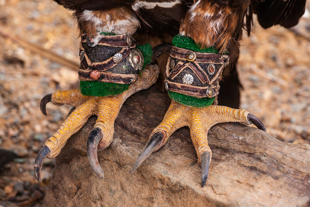 An eagle's legs are decorated with elaborate handcrafted ornaments. (Photo by Tariq Zaidi/The Washington Post)