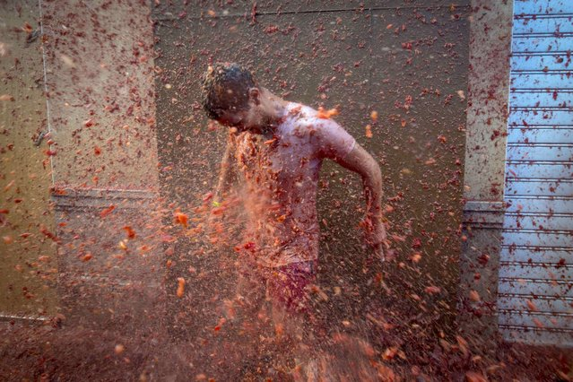 """A reveller is pelted with tomato pulp during the annual """"Tomatina"""" festivities in the village of Bunol, near Valencia on August 26, 2015. (Photo by Biel Alino/AFP Photo)"""