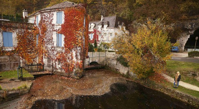 A girl looks at a restaurant covered in autumnal Virginia creeper in Brantome in the Dordogne region of France November 13, 2016. (Photo by Phil Noble/Reuters)