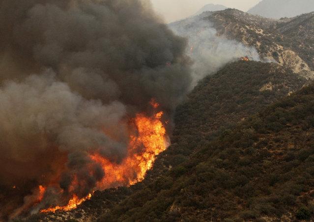 The Sand Fire burns near Wildlife Waystation on Little Tujunga Canyon Road on Saturday, July 23, 2016. (Photo by Katharine Lotze/The Santa Clarita Valley Signal via AP Photo)