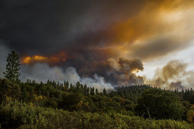 Smoke rises from a fire near Butte Mountain Road, Thursday September 10, 2015, near Jackson, Calif. (Photo by Andrew Sent/The Sacramento Bee via AP Photo)