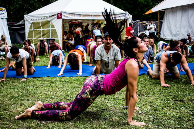 Festival goers perform yoga at the 24th Sziget Festival, in Budapest, Hungary, 13 August 2016. (Photo by Major Kata/Origo.hu)