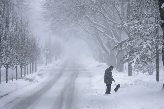 John Baer of Elgin, Ill.  finishes shoveling half of his driveway on Wing Park Ave. during a snow storm in the suburbs of Chicago, Ill. on Tuesday, March 5, 2013. (Photo by Daily Herald, Brian Hill/AP Photo)
