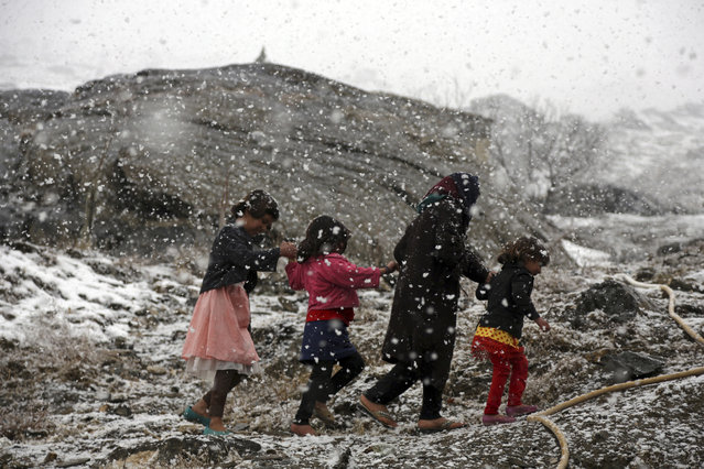 Afghan children walk during a snowfall on hill on the outskirts of Kabul, Afghanistan, Wednesday, January 31, 2018. (Photo by Rahmat Gul/AP Photo)